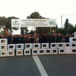 """Bellaterra es manifesta sota el lema """"Respecteu el dret a decidir"""""""